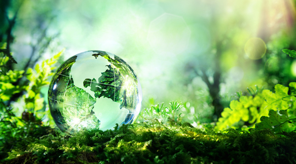 sustainable-world